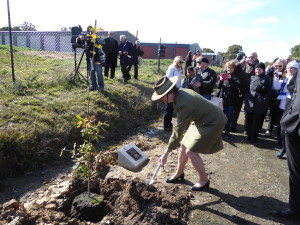 Maj.General Wilkie planted the first of the new trees. Shane Strachan, President of CAFS, Cr John Phillips, Mayor of Ballarat and I planted the next three trees.