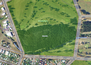 An aerial view showing the lost Avenue of Honour adjacent to the Mt Xavier Golf Course